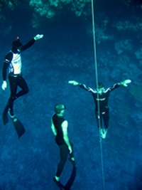 AIDA Freediving Instructor Course (27K)